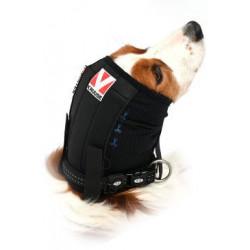 Bandáž uší a hlavy pro psa BUSTER L