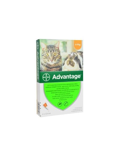 Advantage 40 10% 4x0,4ml pro kočky a králíky
